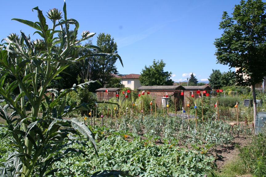 jardins-familiaux02-web